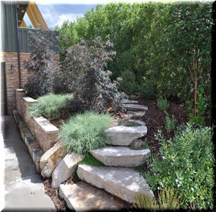 Stone and Step Garden